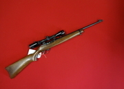 Ruger 10/22 CARBINE Semi-Auto .22  Rifles