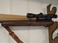 Ruger 10/22 Semi-Auto .22  Rifles for sale