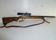 Ruger 10/22 Target Semi-Auto .22  Rifles